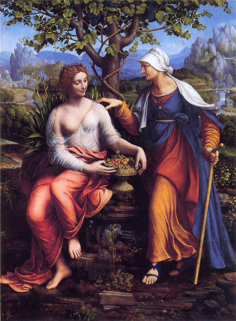 Vertumnus and Pomona  (1518–1522) by  Francesco Melzi