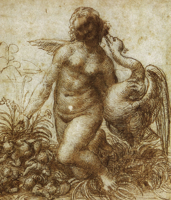 Leda and the Swan, pen and ink and wash over black chalk on paper, 160 x 139 mm. 1503 - 1507, Devonshire Collection, Chatsworth