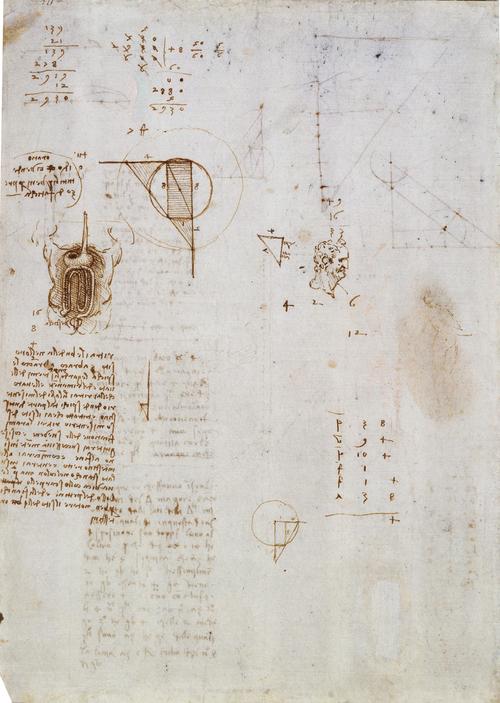 Diagrams w Leda Sketch  c. 1506 - 1508  Pen & Ink  27.9 x 20.4 cm  Royal Collection