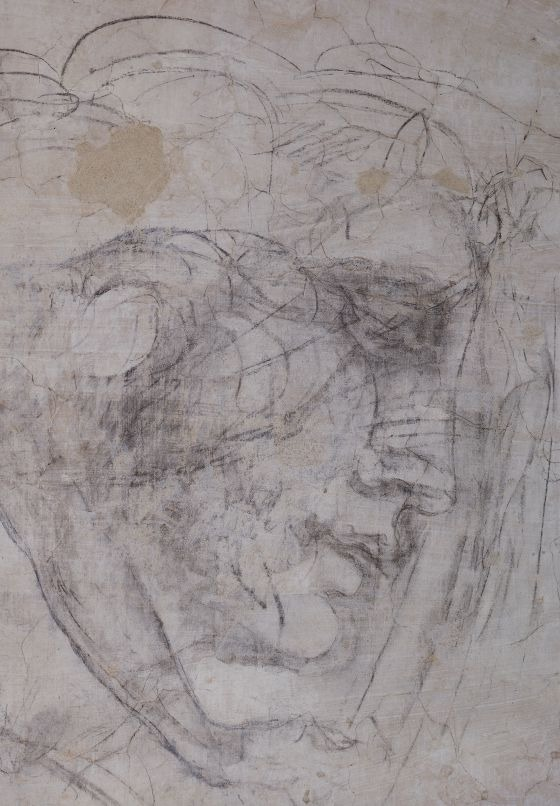 Details of studies attributed to Michelangelo, drawn on the walls of a 'secret' room under the Sagrestia Nuova - Basilica di San Lorenzo, Florence.  Photos: Claudio Giovannini/AFP