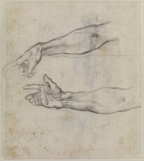 Michelangelo Buonarroti - sketch - arms.jpg