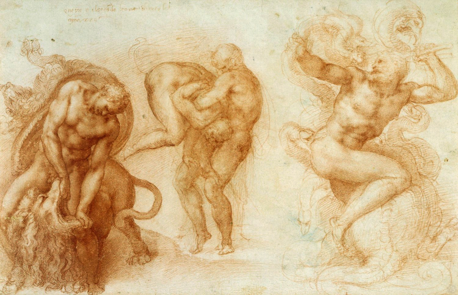"c.1530  Red chalk  27.2 x 42.2 cm   Description:   ""A drawing of three highly finished vignettes. On the left, is the killing of the Nemean Lion; at the centre, are Hercules and Antaeus; on the right, is Hercules fighting with the Lernean Hydra. Inscribed: 'questo e il secodo leone ch ercole / amazzo'."""