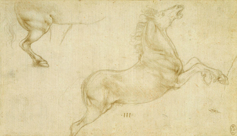 Leonardo da Vinci - Drawings - Animals - Horse Rearing.jpg