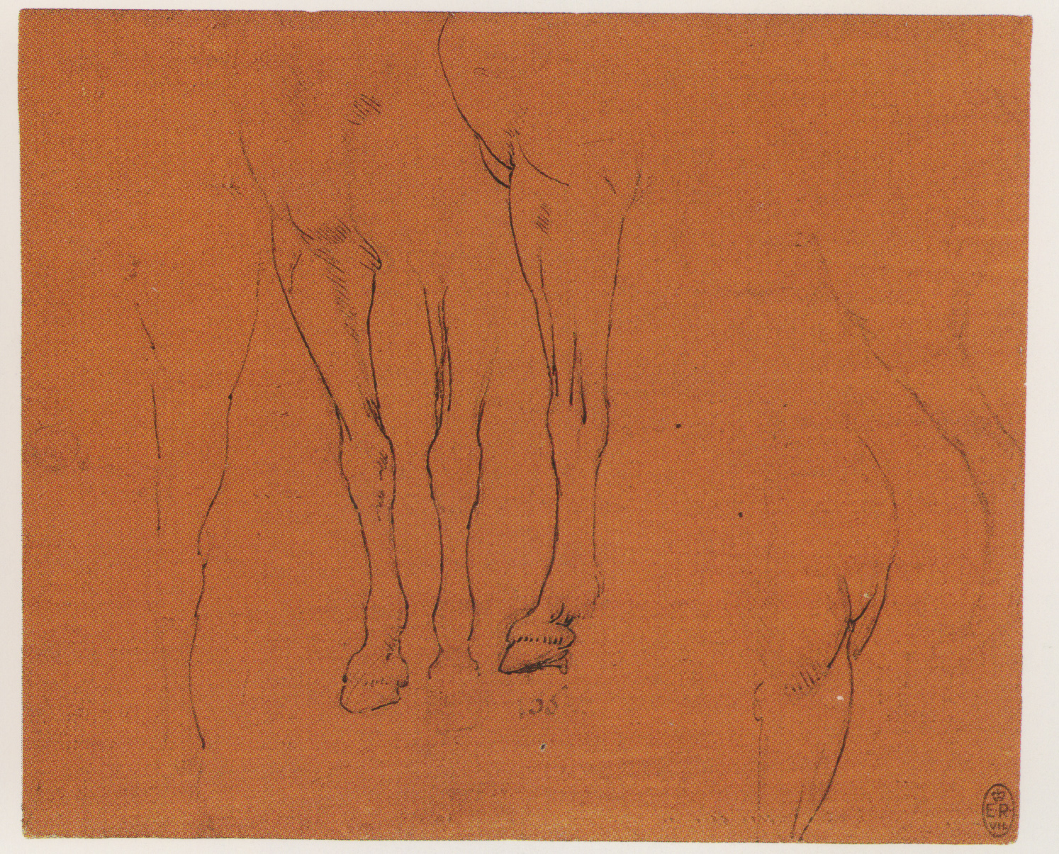 Leonardo-da-Vinci---Drawings---Animals--Horse Studies 1480 c.jpg