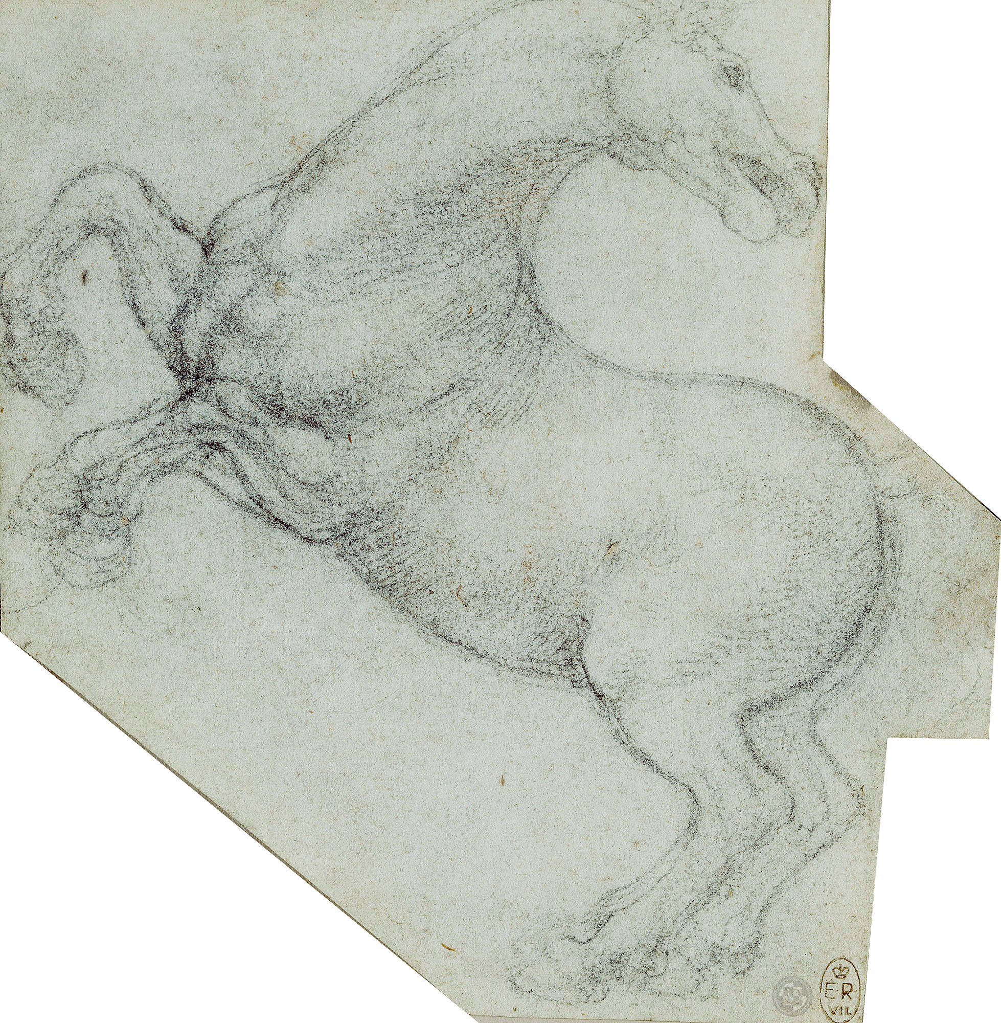 Leonardo-da-Vinci---Drawings---Animals---Horses---05.jpg