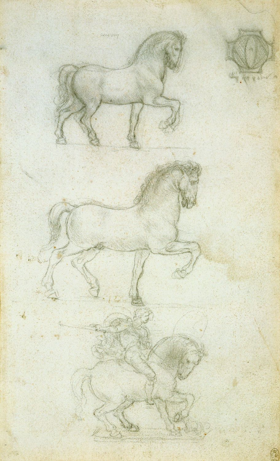 Leonardo-da-Vinci---Drawings---Animals---Horses---08.jpg