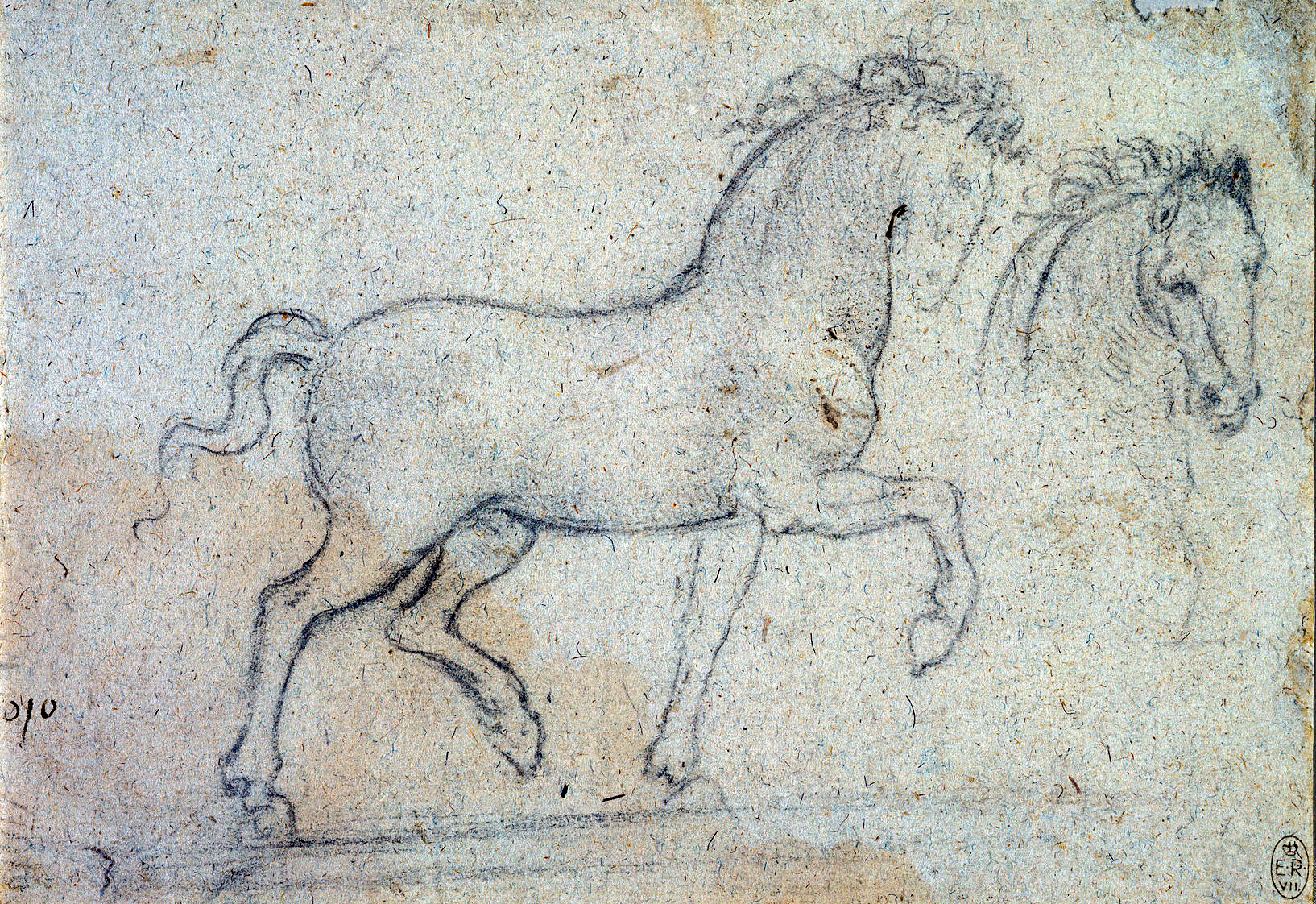 Leonardo-da-Vinci---Drawings---Animals--Horses-side.jpg