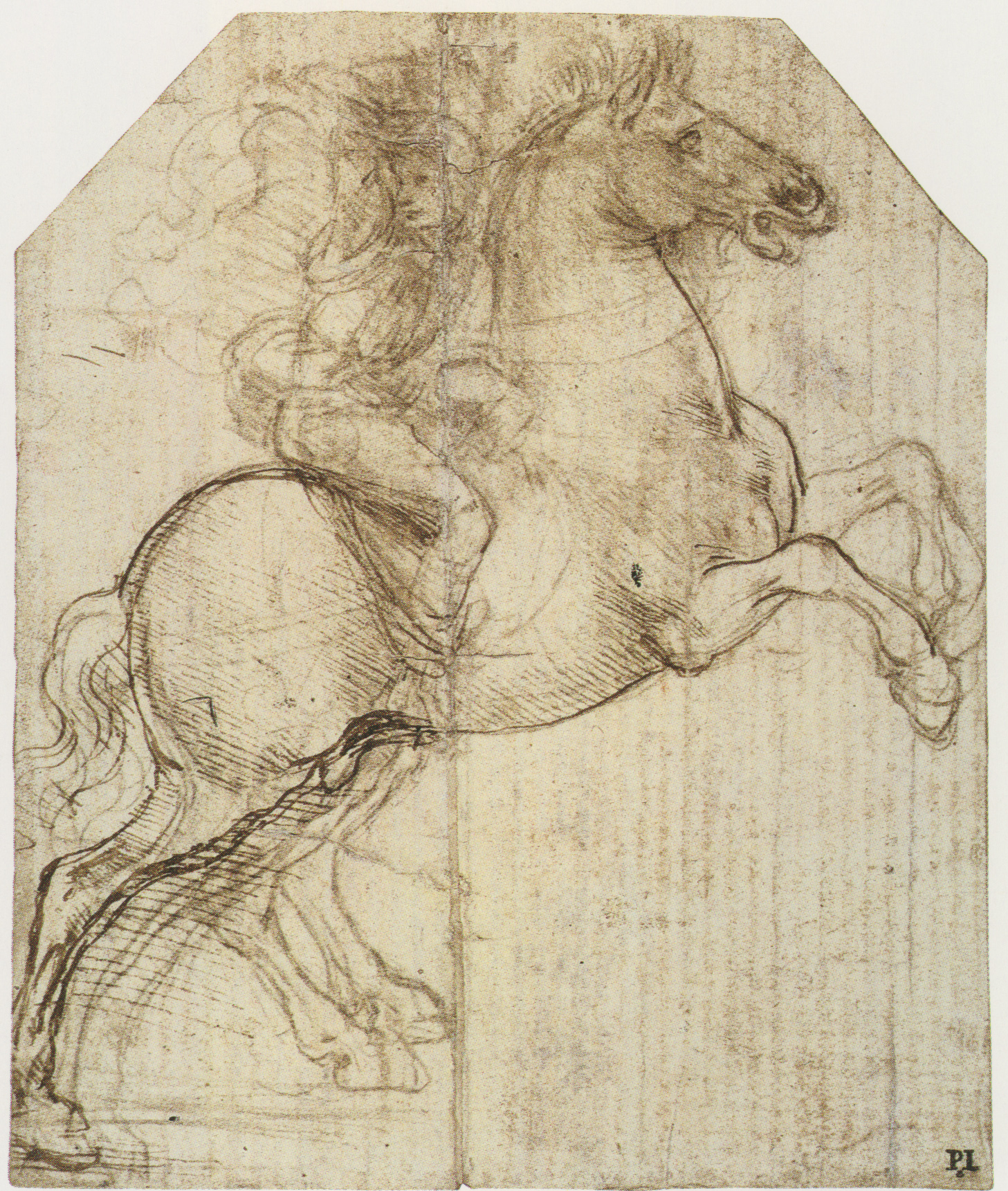 rider on a rearing horse 1482.jpg