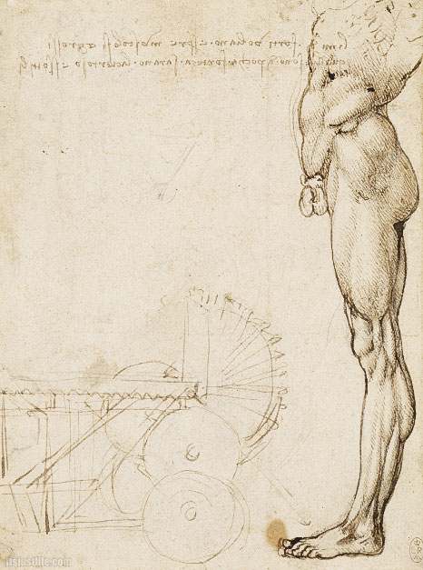 davinci-works-anatomy-sketches-nude-in-profile-machinery-.jpg