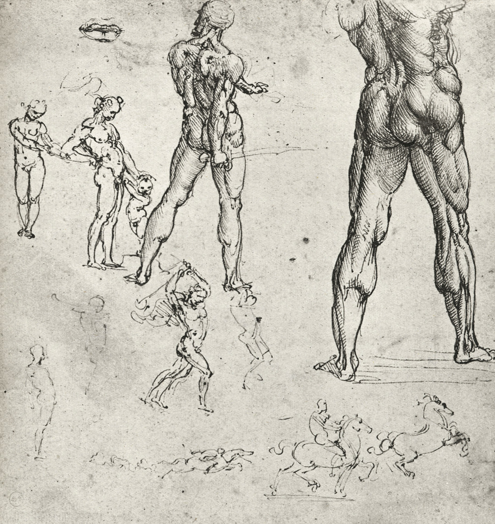 davinci-works-sketches-nudes-muscles.jpg