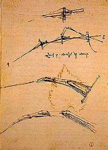 davinci-codex-flightofbirds-12-leafandgravity.jpg