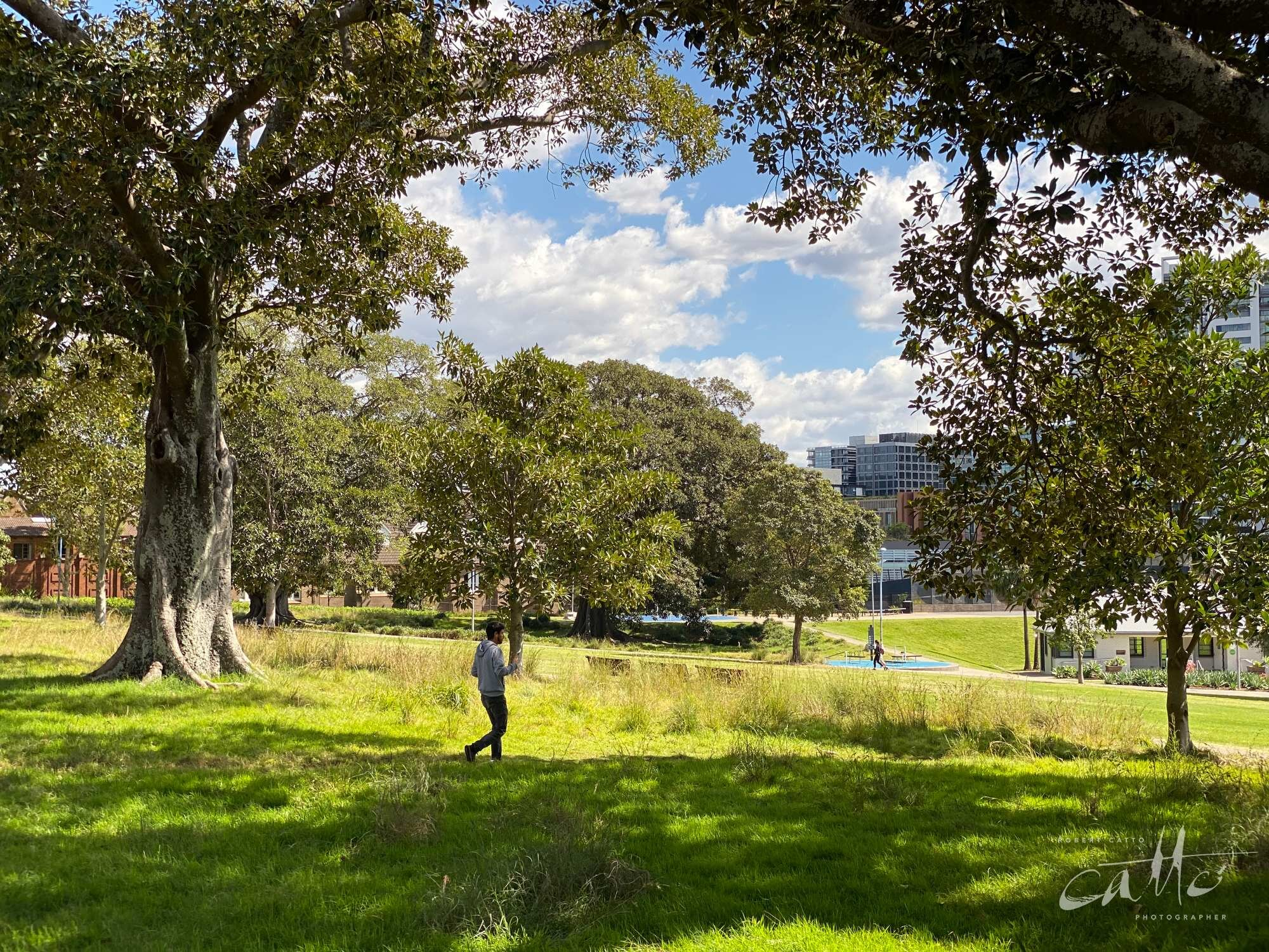 Prince Alfred Park, Surry Hills (iPhone 11 Pro - 2x zoom lens)