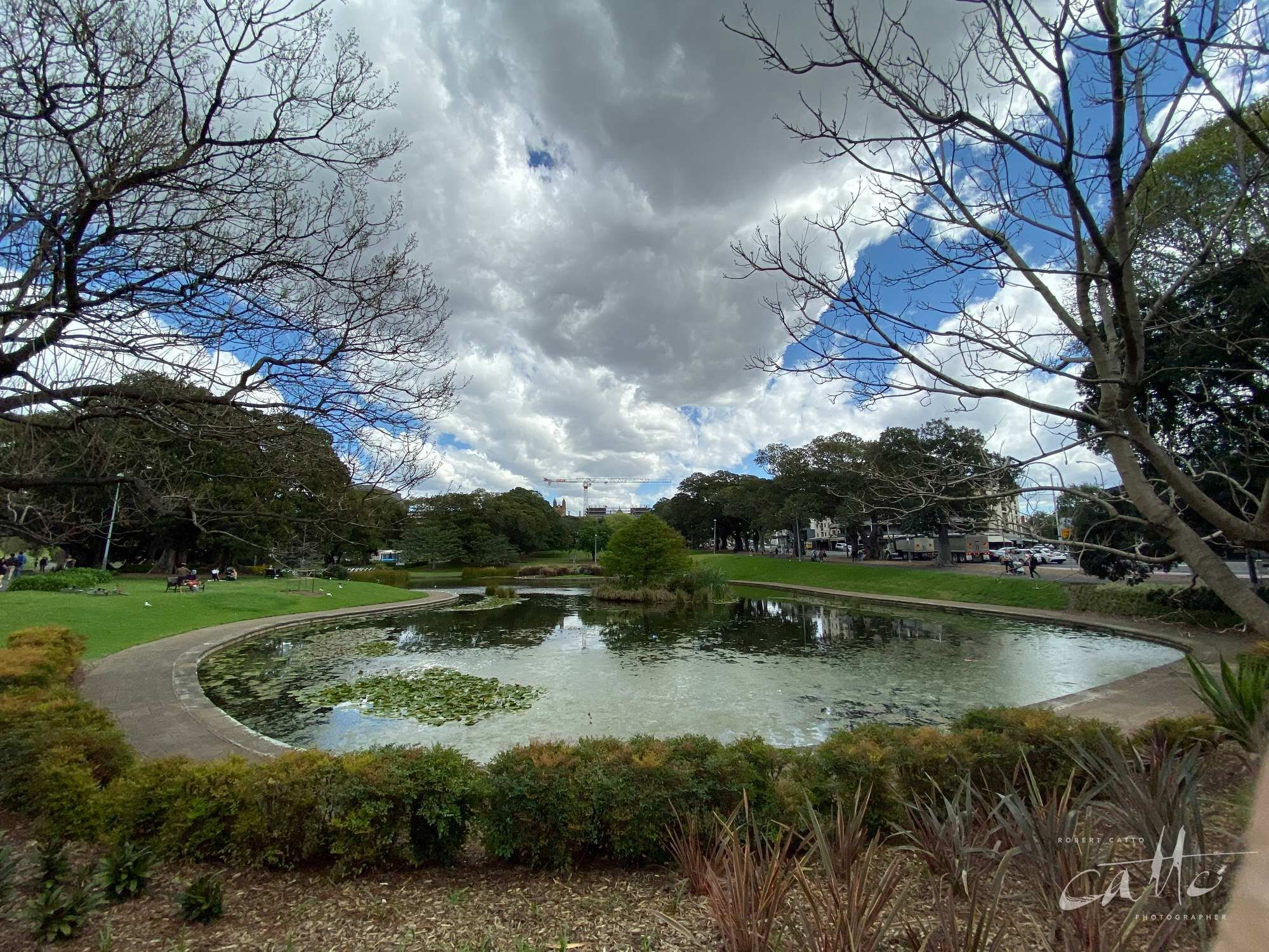 Lake Northam, Victoria Park, Sydney (iPhone 11 Pro - 0.5x wide lens)