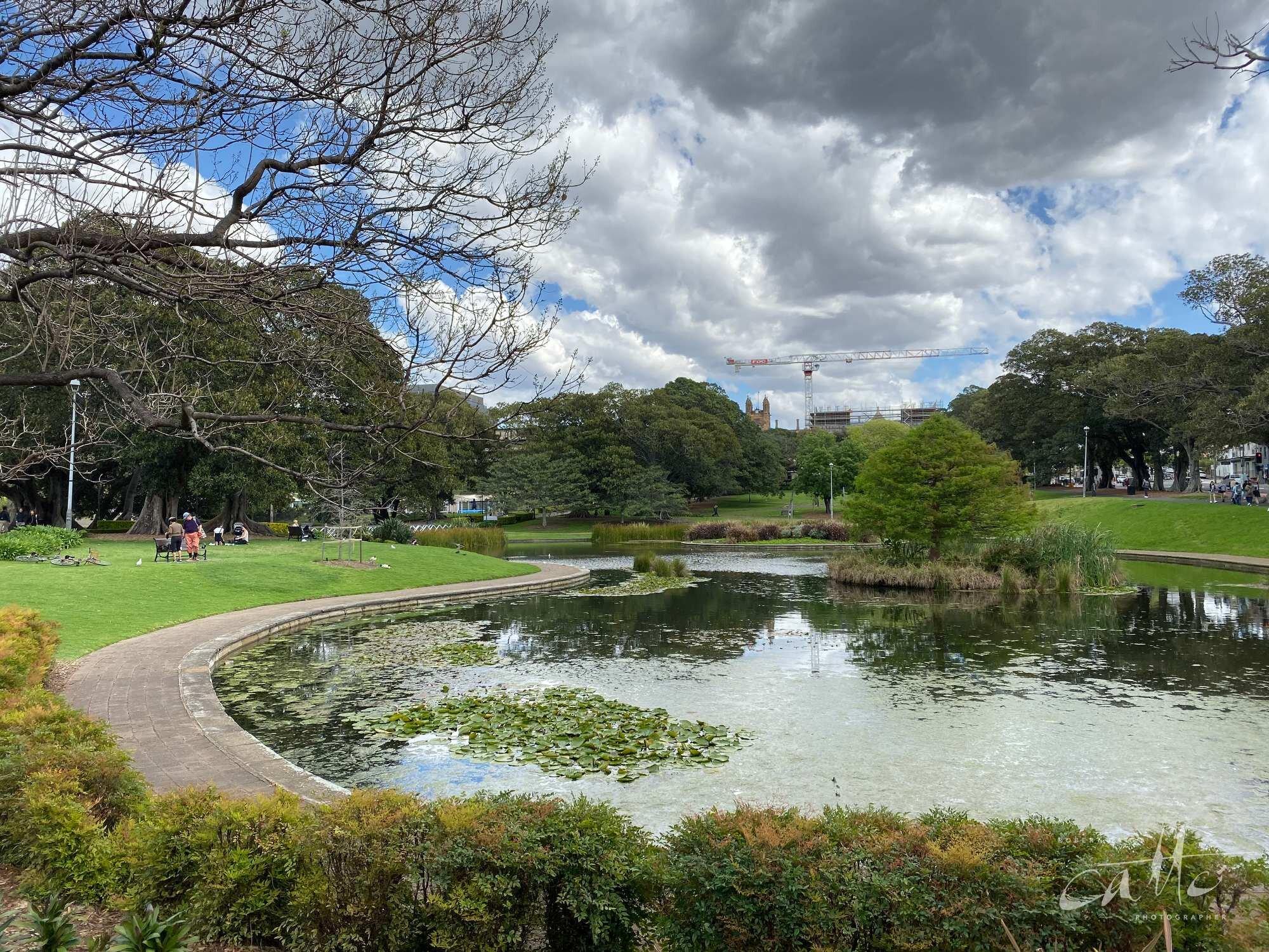 Lake Northam, Victoria Park, Sydney (iPhone 11 Pro - normal lens)