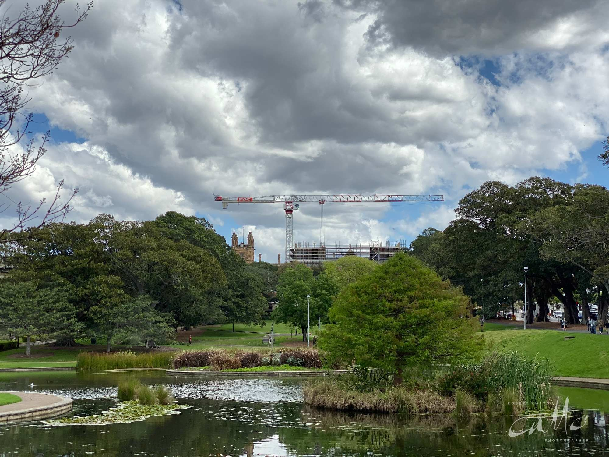 Lake Northam, Victoria Park, Sydney (iPhone 11 Pro - 2x zoom lens)