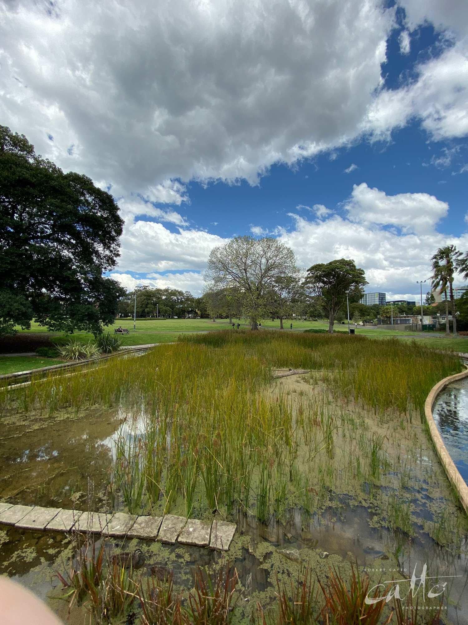 Victoria Park, Sydney (iPhone 11 Pro - 0.5x wide lens) [Feat. Finger]