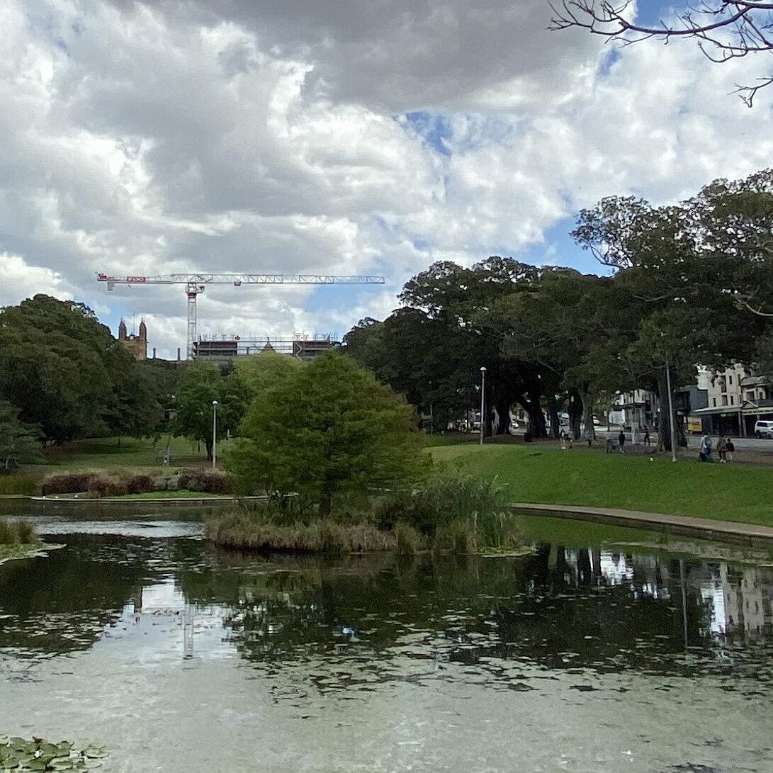 Lake Northam, Victoria Park, Sydney (iPhone 11 Pro - 0.5x wide lens) - 100% crop