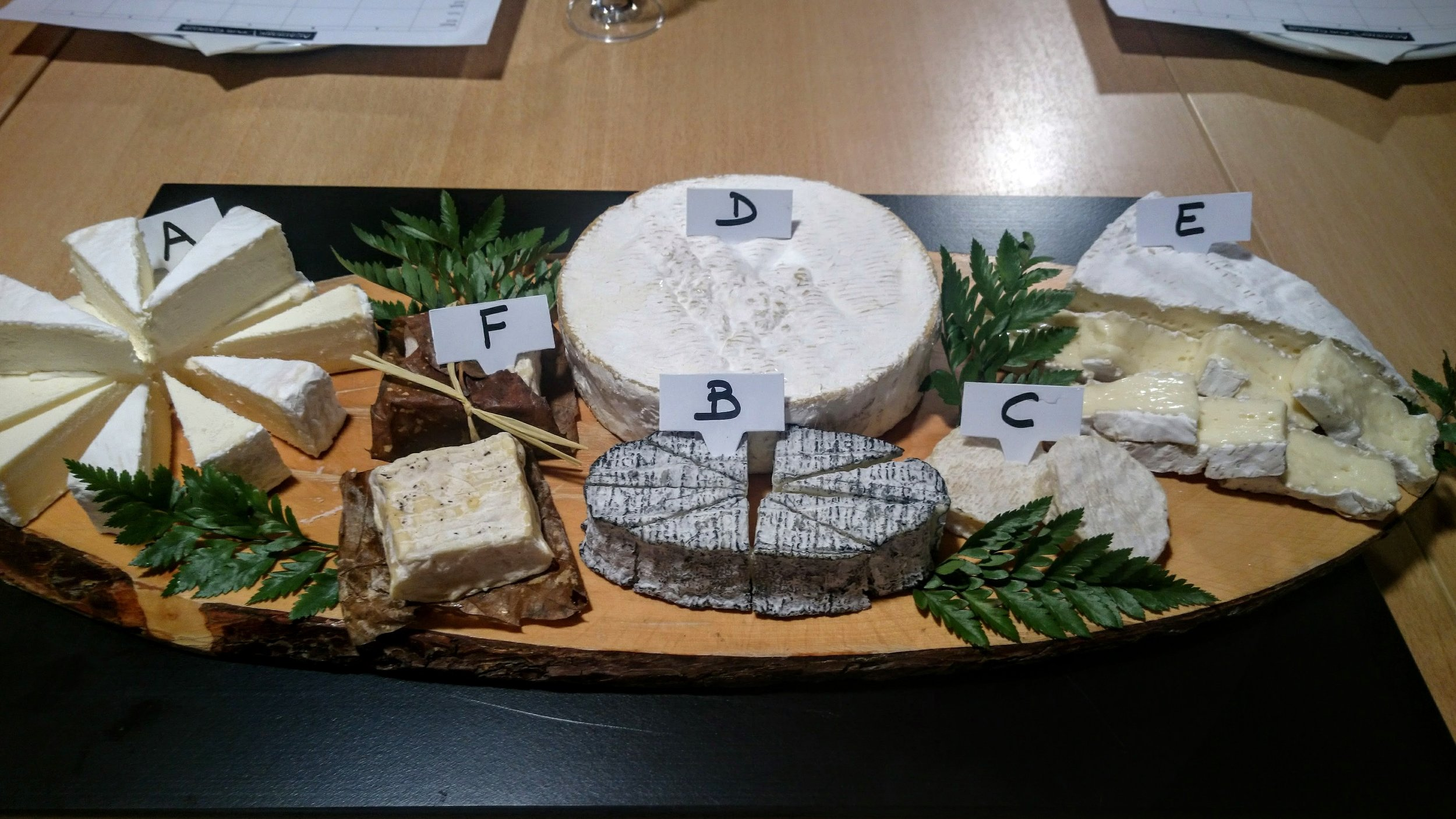 Cheese tasting of the day... all soft cheeses.