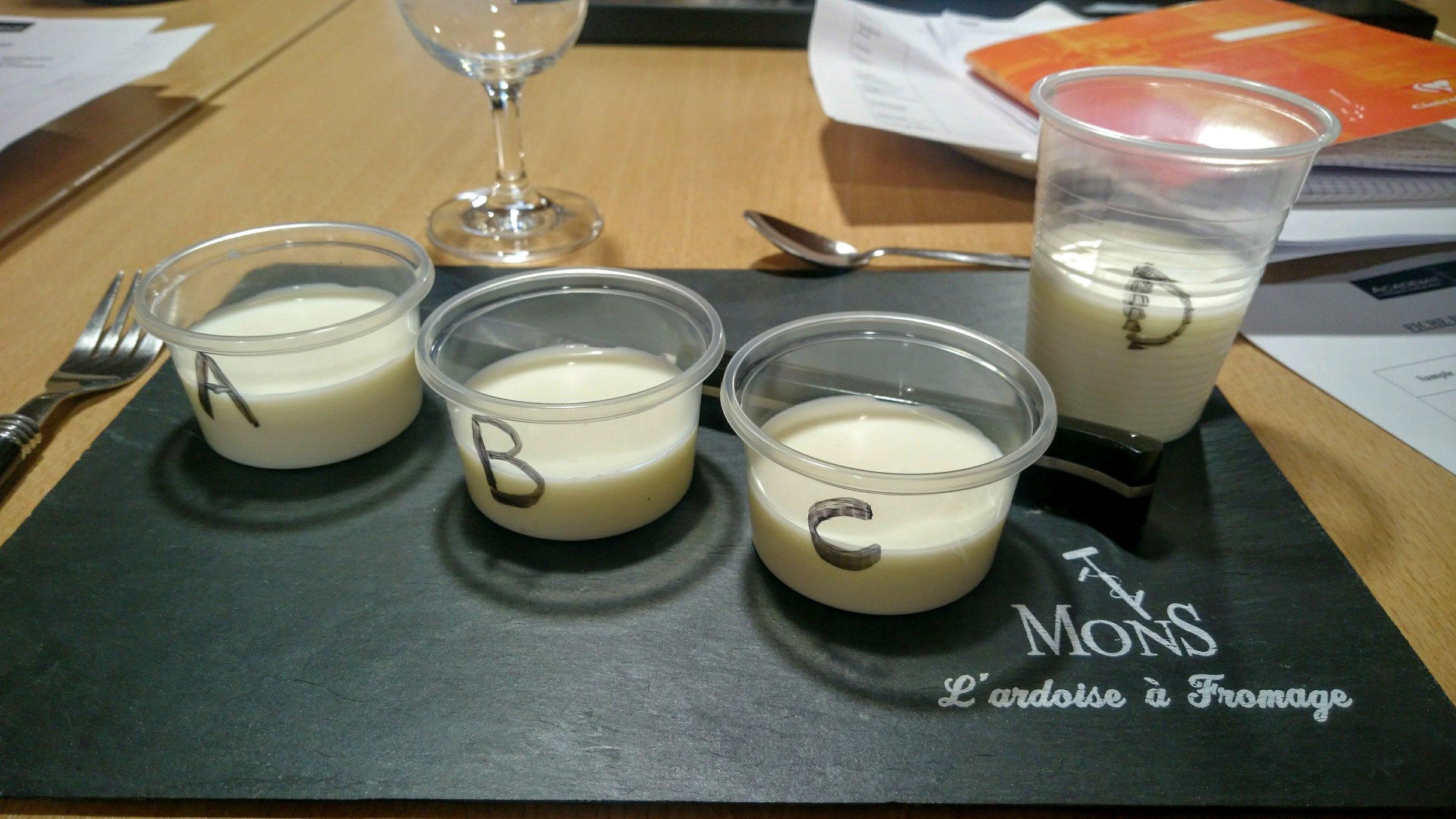 Dégustation lait