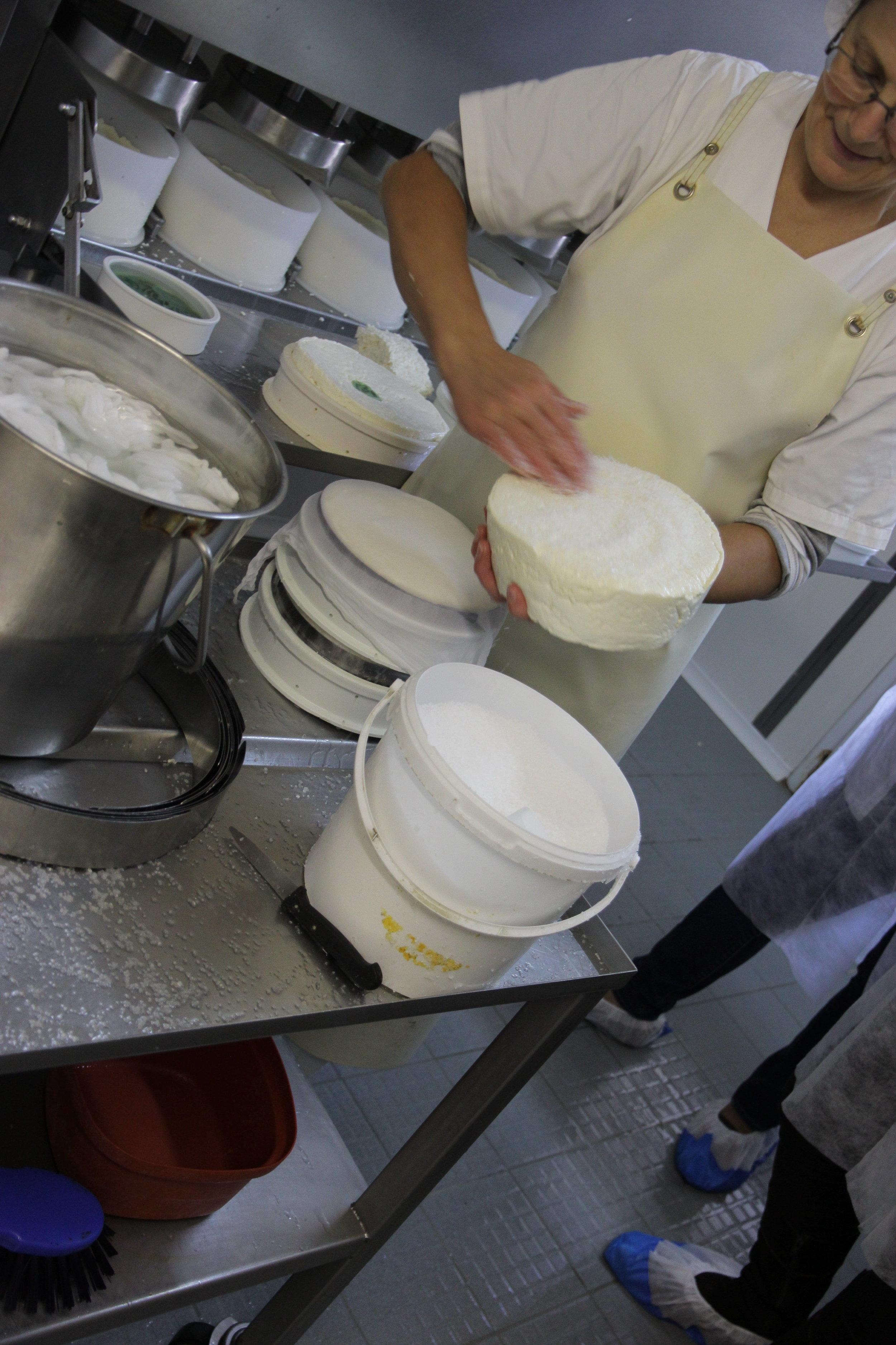 La production fermière de St Nectaire àla ferme Auriel à Montboudif (Auvergne). Nous l'avons visité mardi. La dame dans la photo vient de faire le prépressage de la caillé et est en train de les saler.