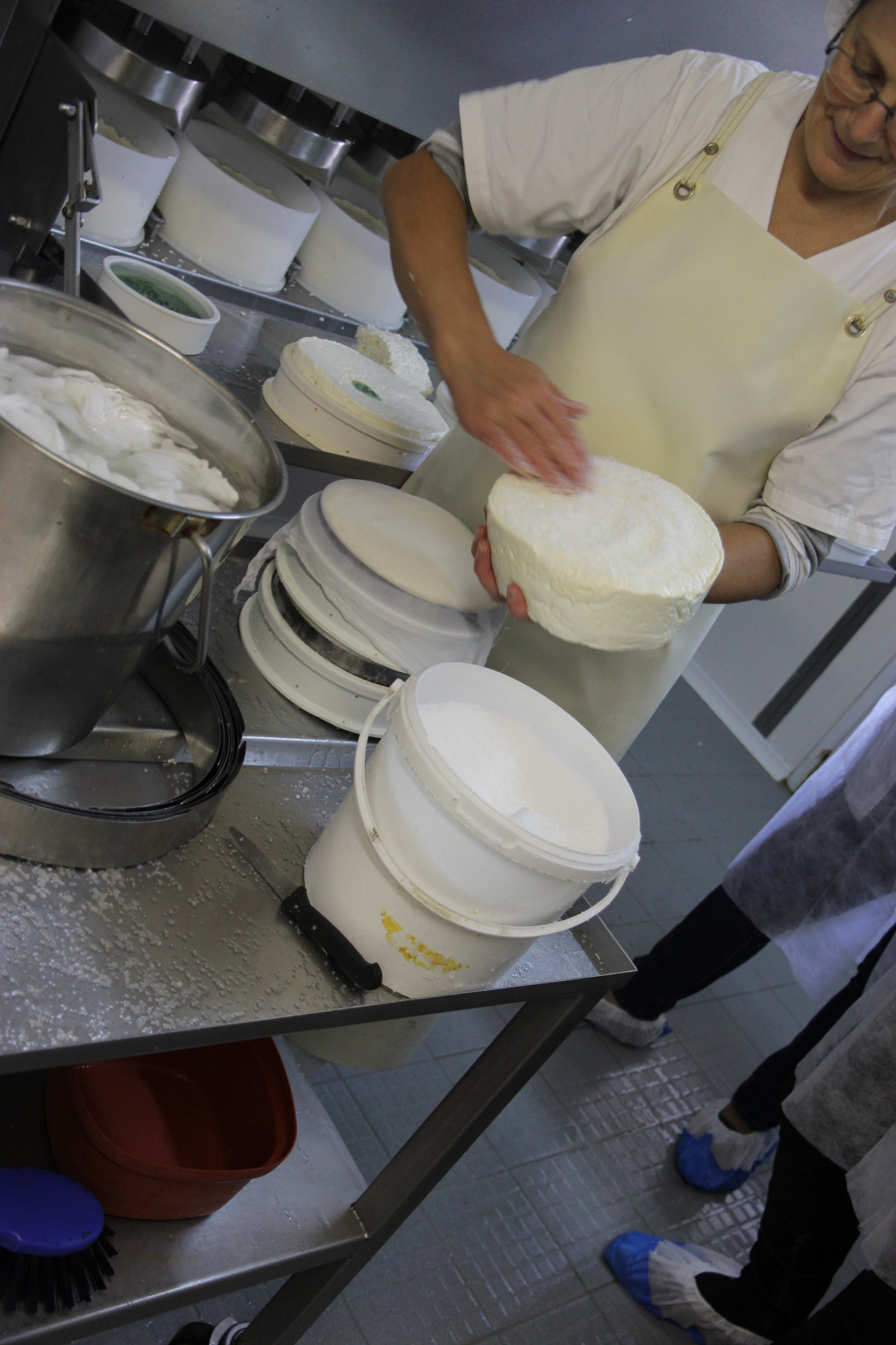 Farmstead production of St Nectaire at Auriel Farms in Montboudif (Auvergne). We visited the farm on Tuesday. The woman has just finished pre-pressing the fresh curd into molds and is salting them.