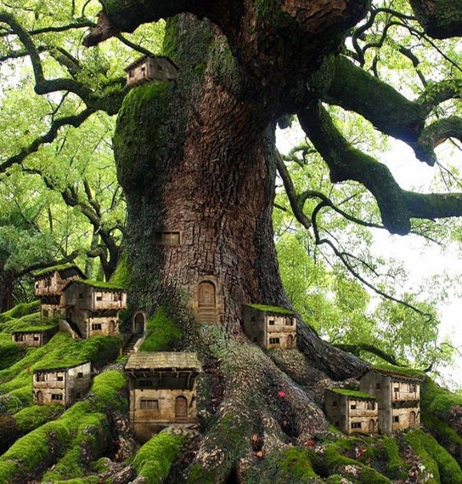 TreeTown.jpg