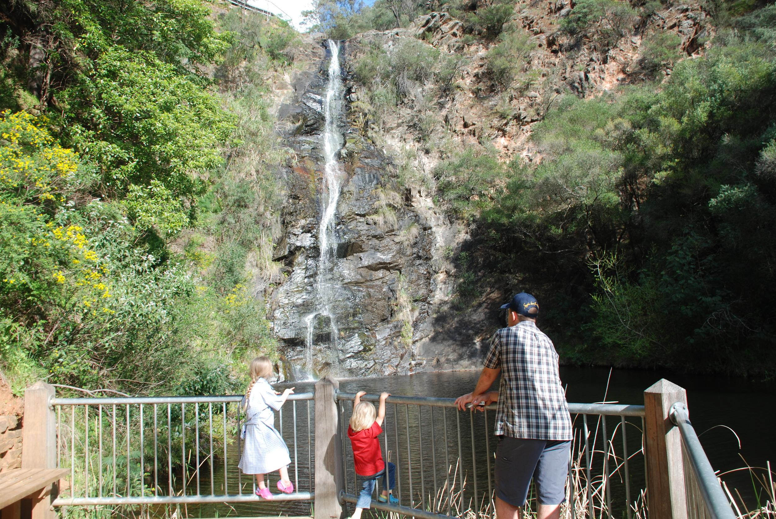 Waterfall Gully Falls.jpg