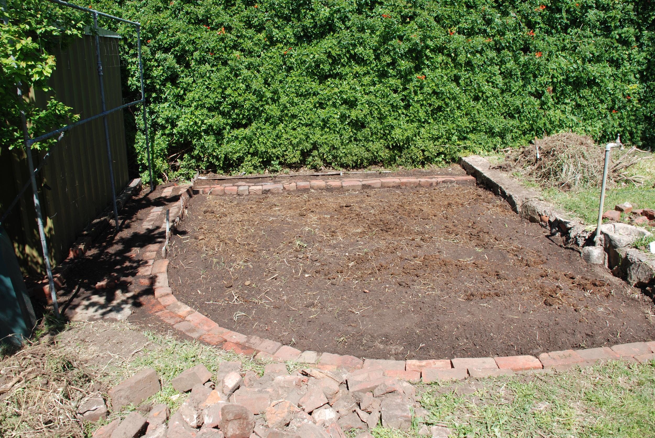 Clucker Tuck Zone Awaiting Seeds