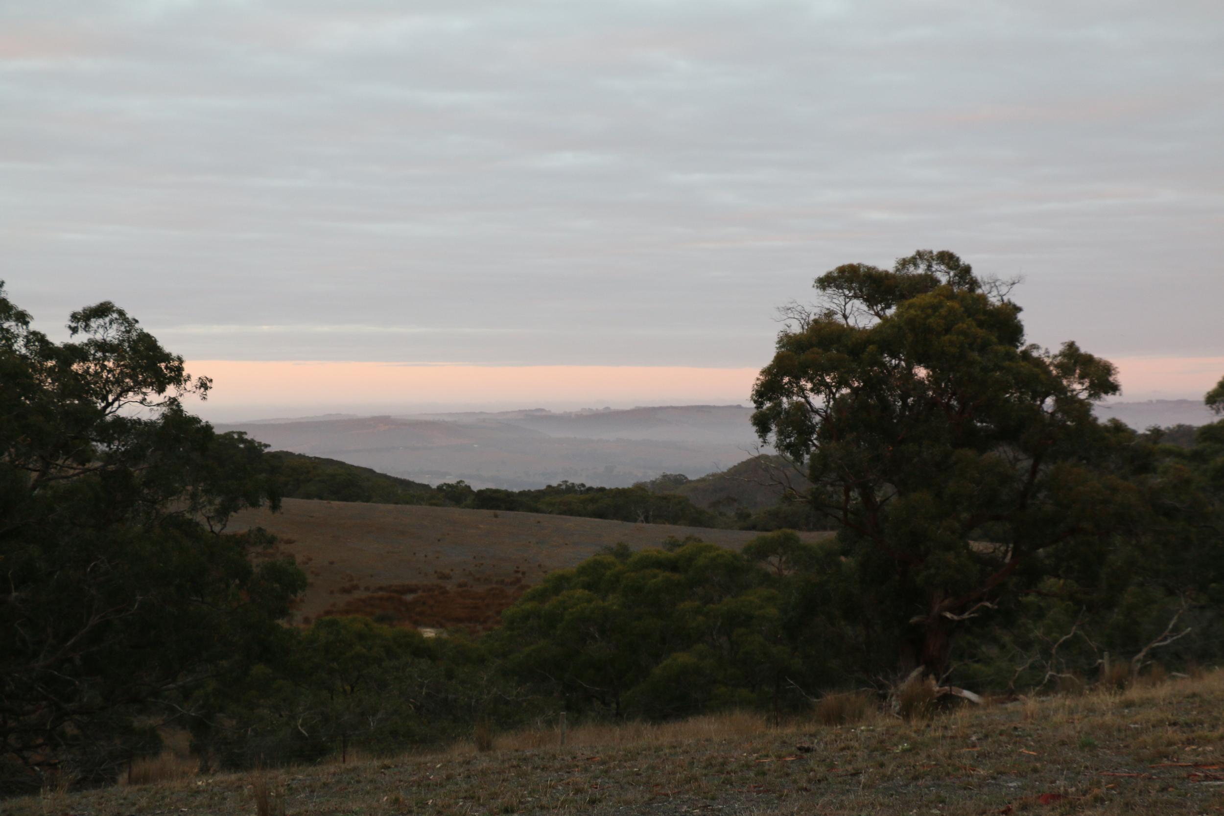 Sunrise Vista.jpg