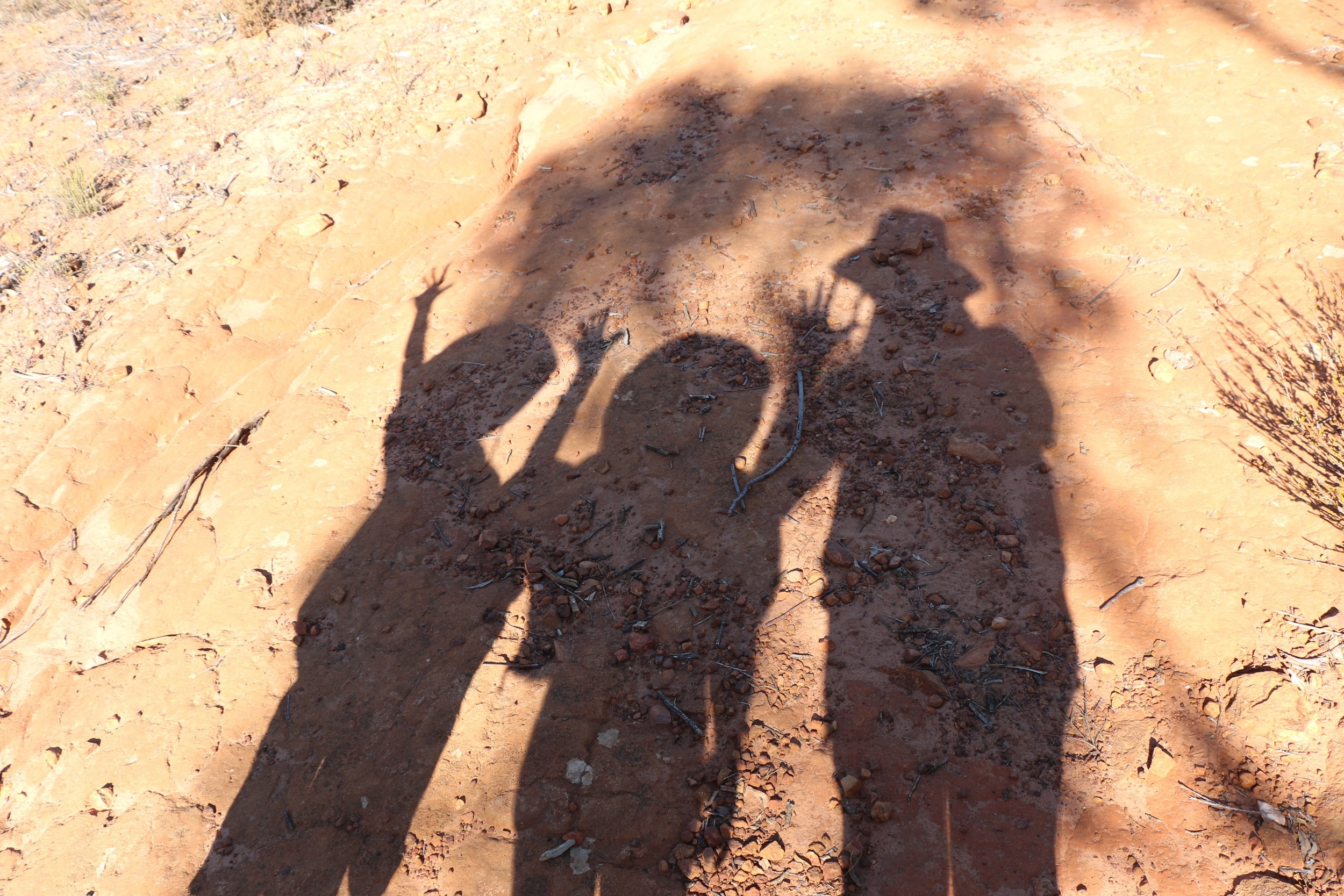 Shadow Puppets.jpg