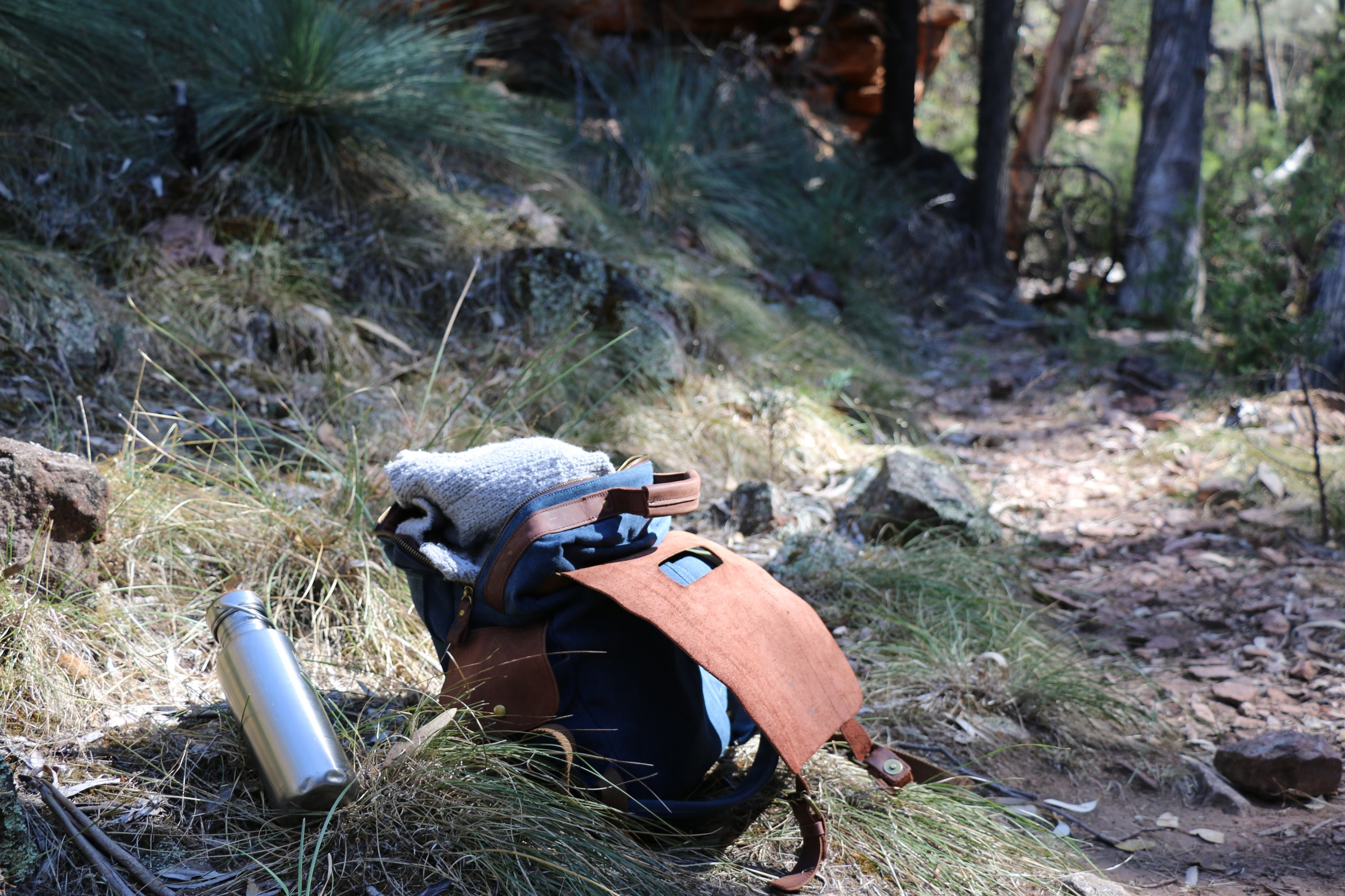 Hiking Pack.jpg