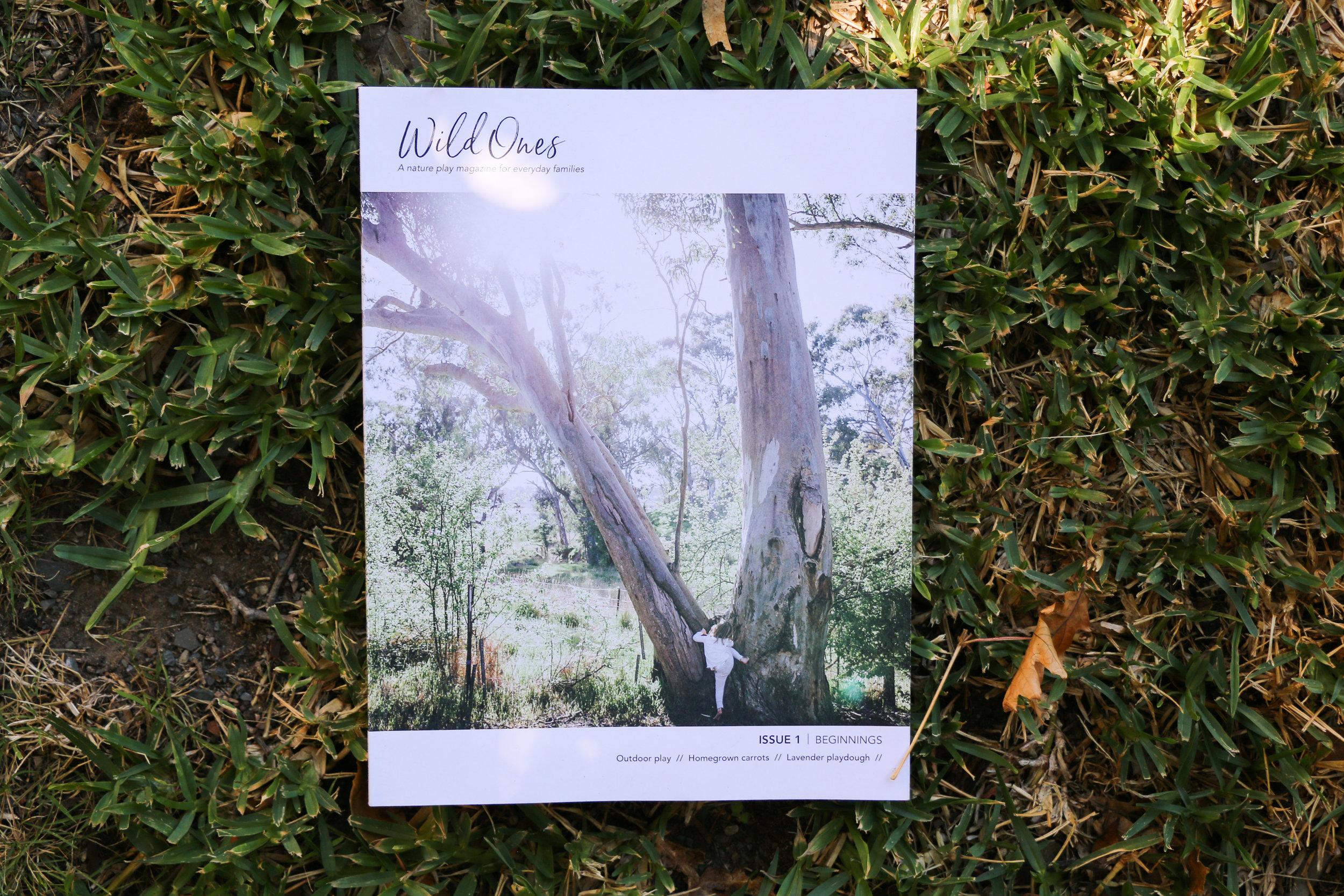 Wild Ones Mag 1