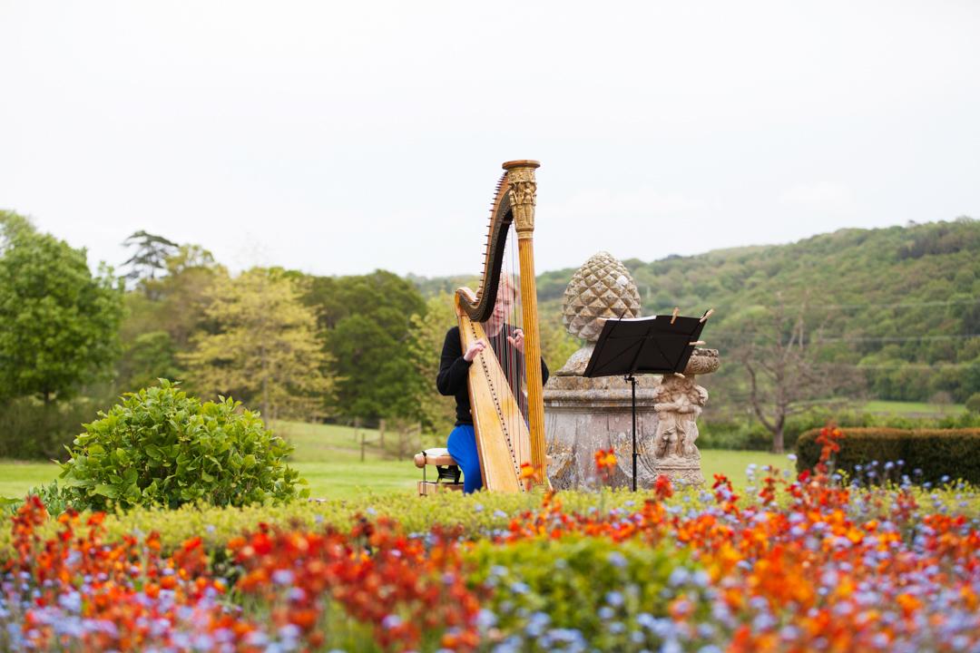 harpist exeter