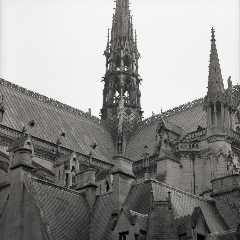 The roof of the Cathédrale Notre-Dame de Paris.