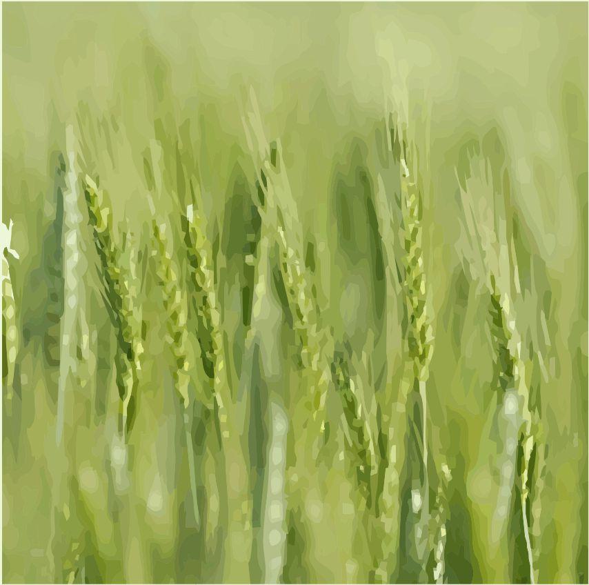 Wheat Straw.jpg