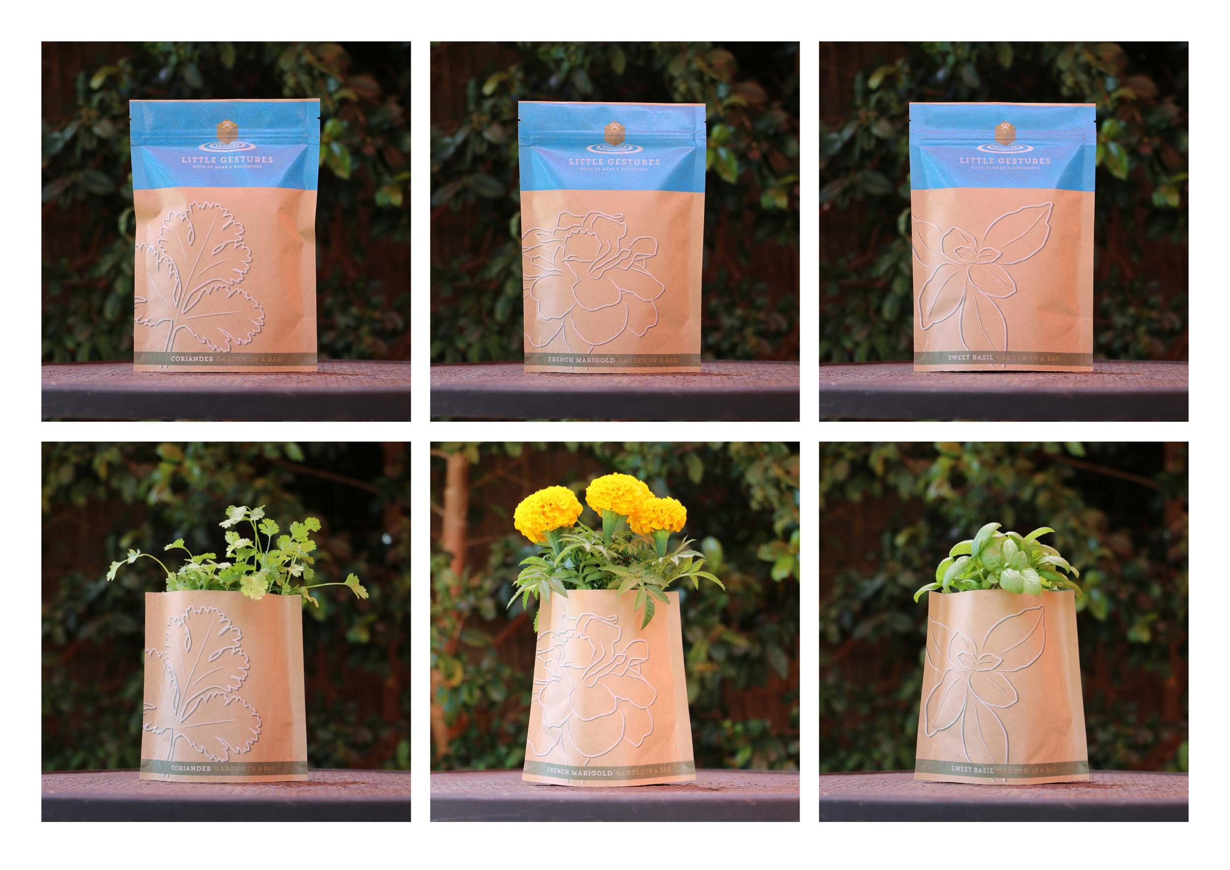 Packaging Little Gestures.jpg