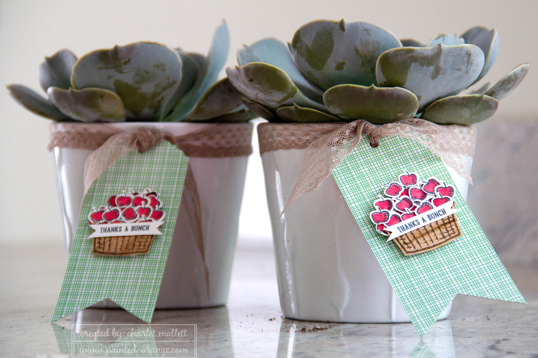 Sprinkles of Life tags - teacher gifts