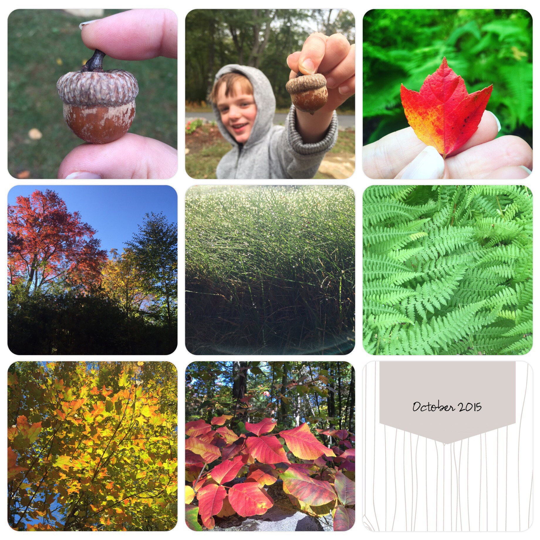 October and signs of a new season