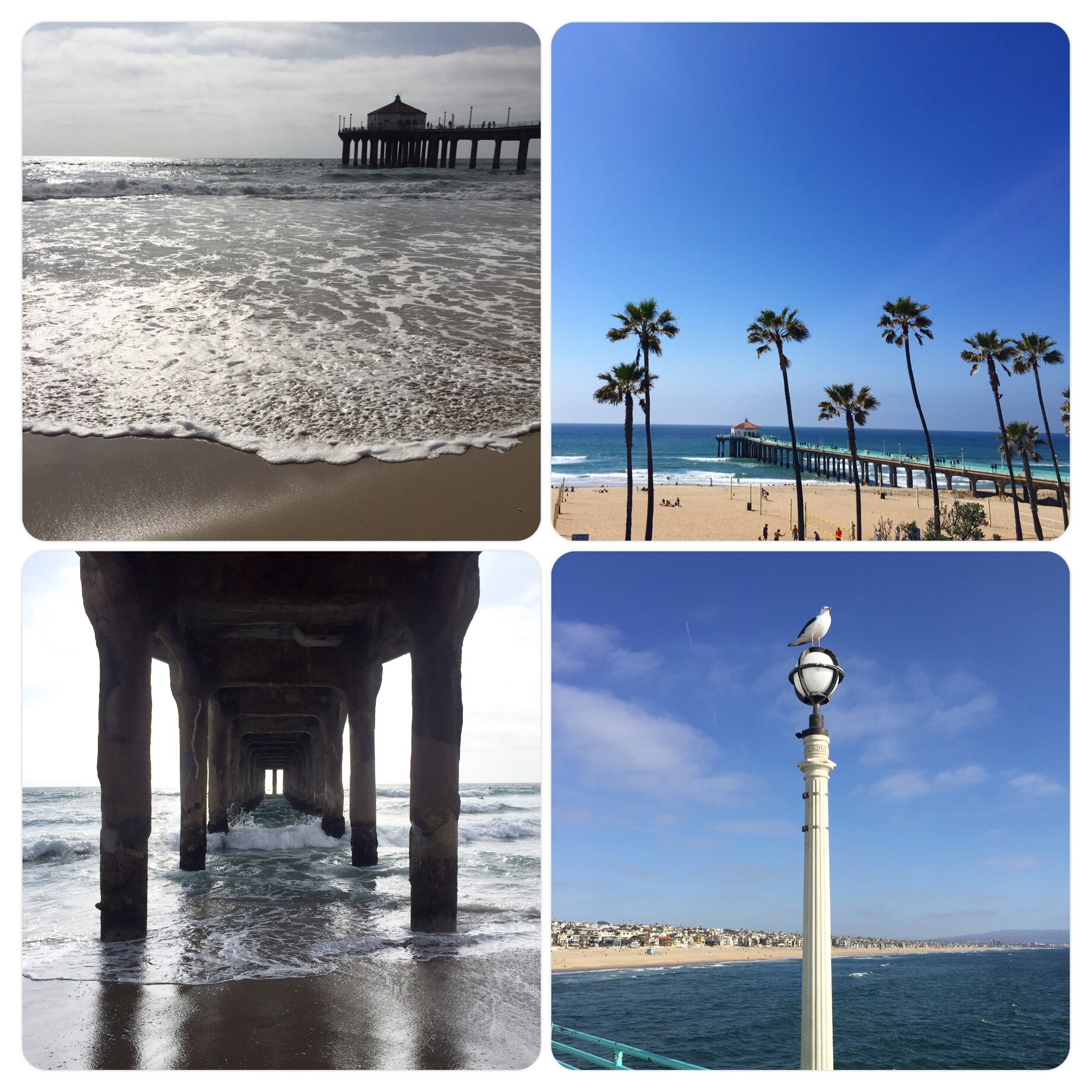 Manhattan Beach 3.18.16
