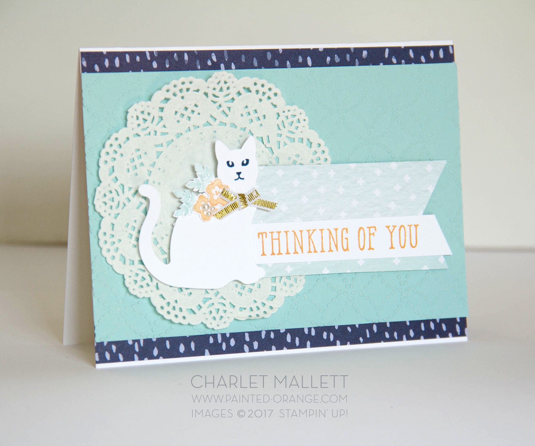 Thinking of You cat card - Window Shopping - Stampin' Up! Charlet Mallett