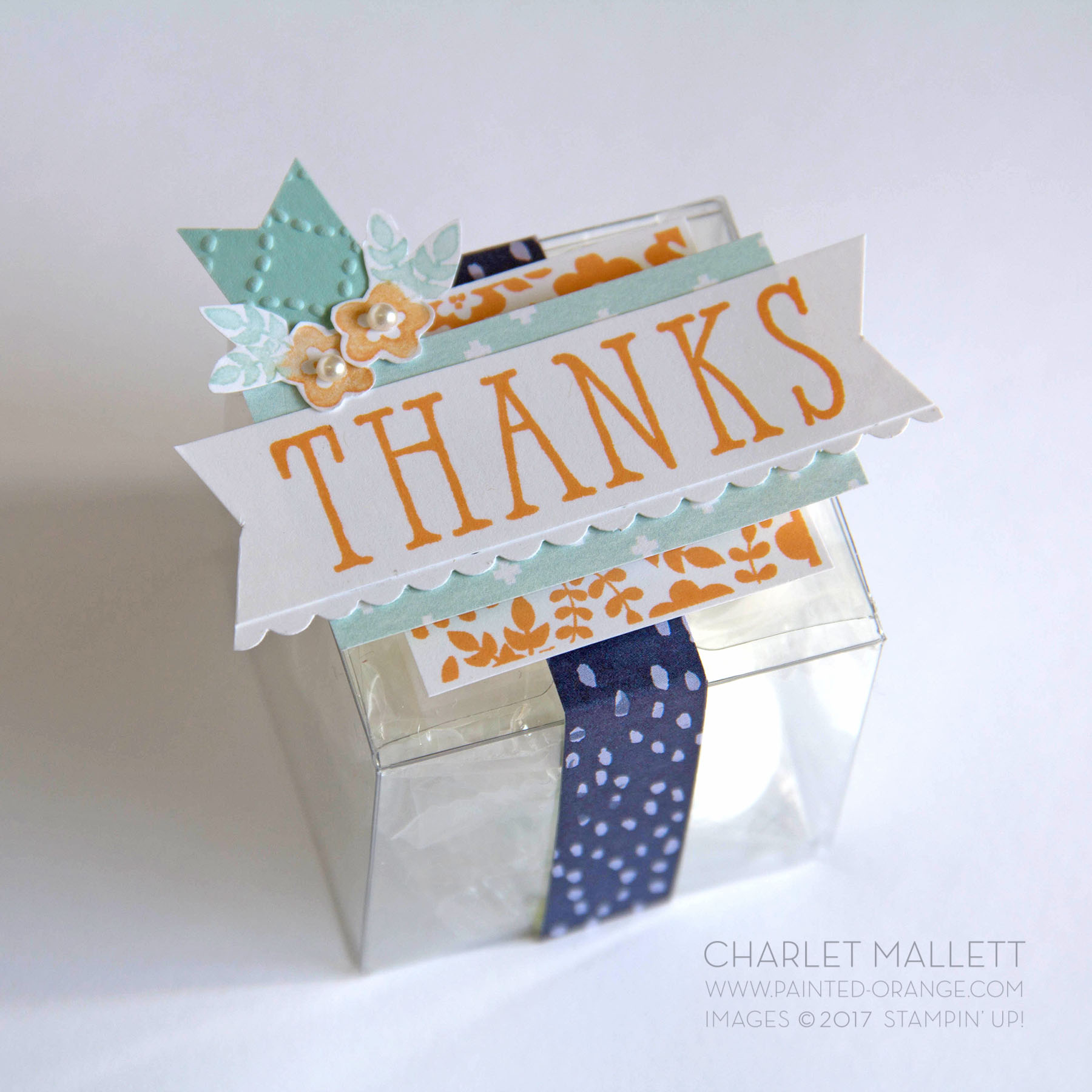 Window Shopping THANKS treat box. Charlet Mallett, Stampin' Up!