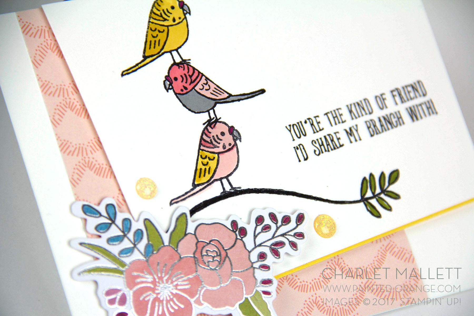 Bird Banter OSDS4a.jpg