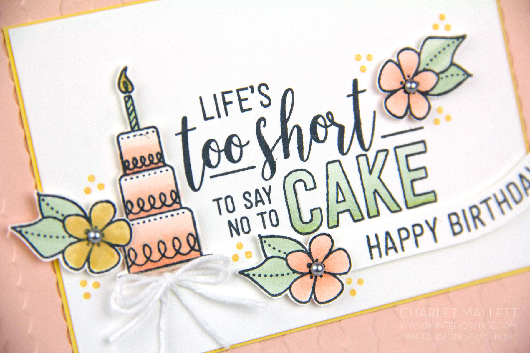 Life's too shirt to say no to cake … Birthday Card using Amazing Life stamp set - Stampin' Up! Charlet Mallett