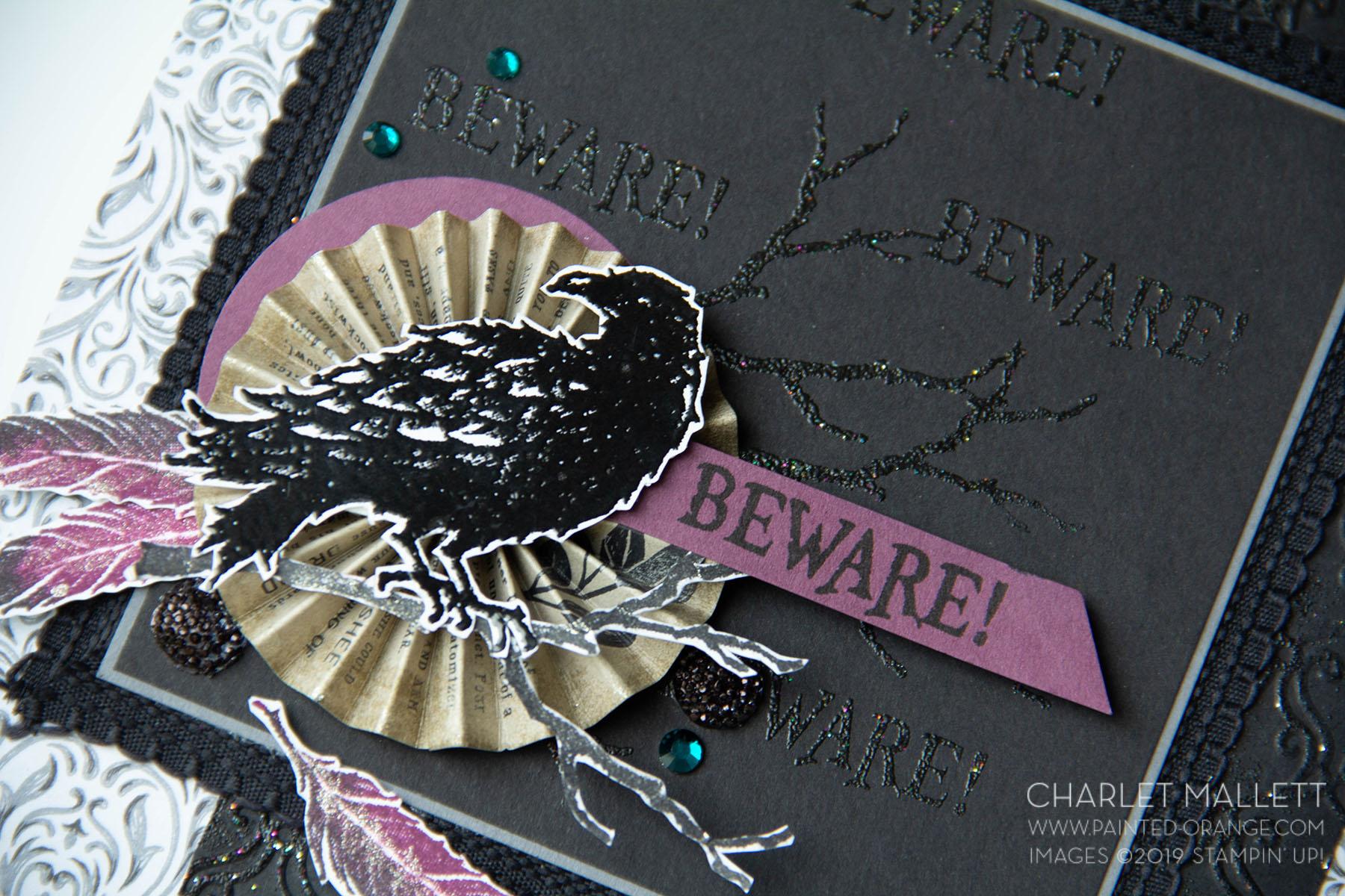 Raven (7 of 9).jpg