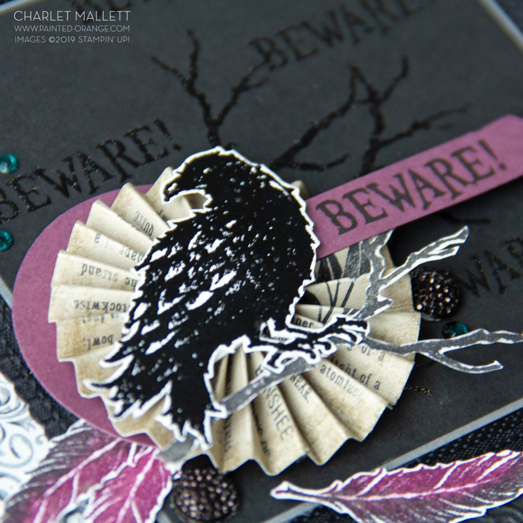 Raven (2 of 9).jpg