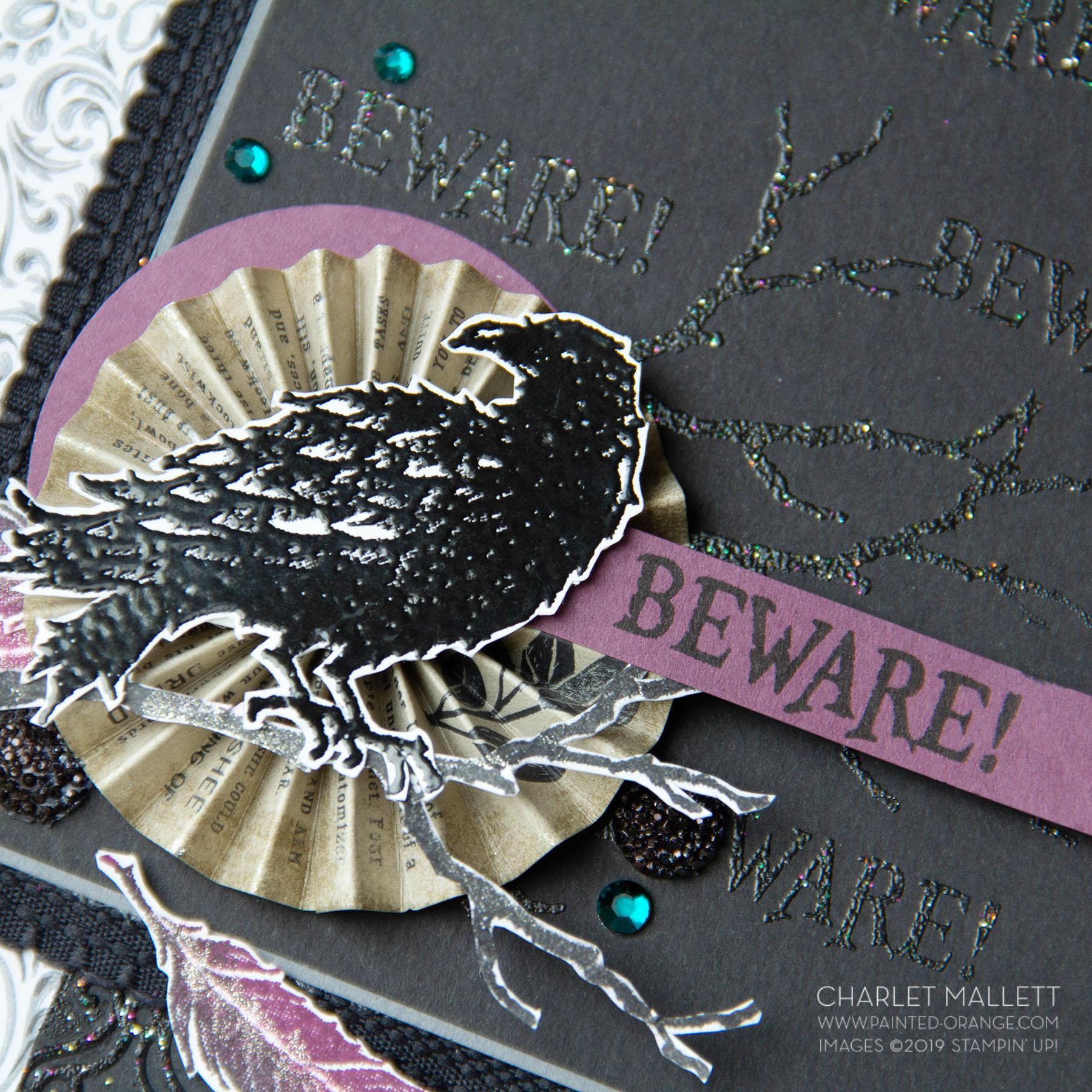 Raven (6 of 9).jpg