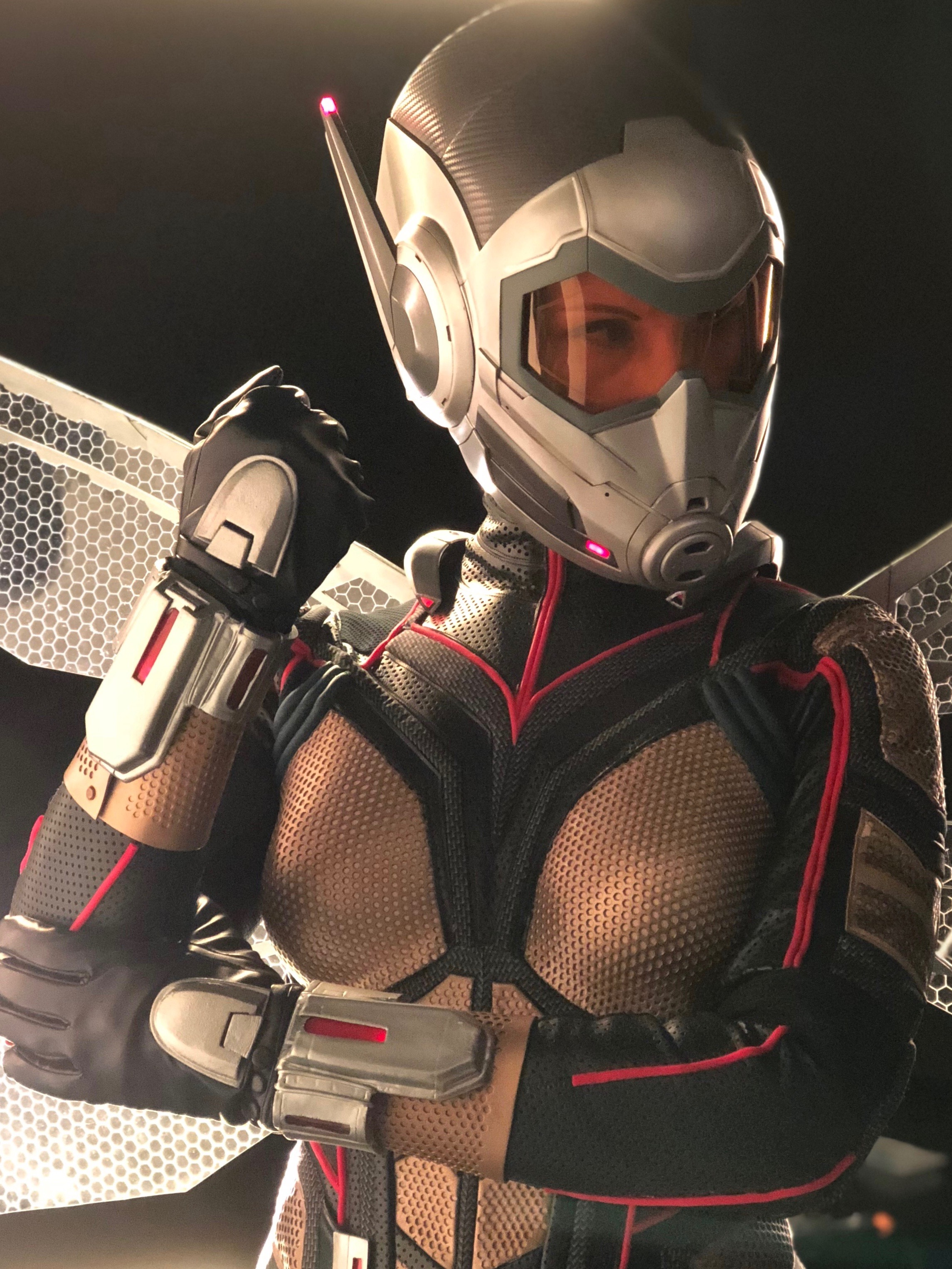 Beverly Downen  as Wasp
