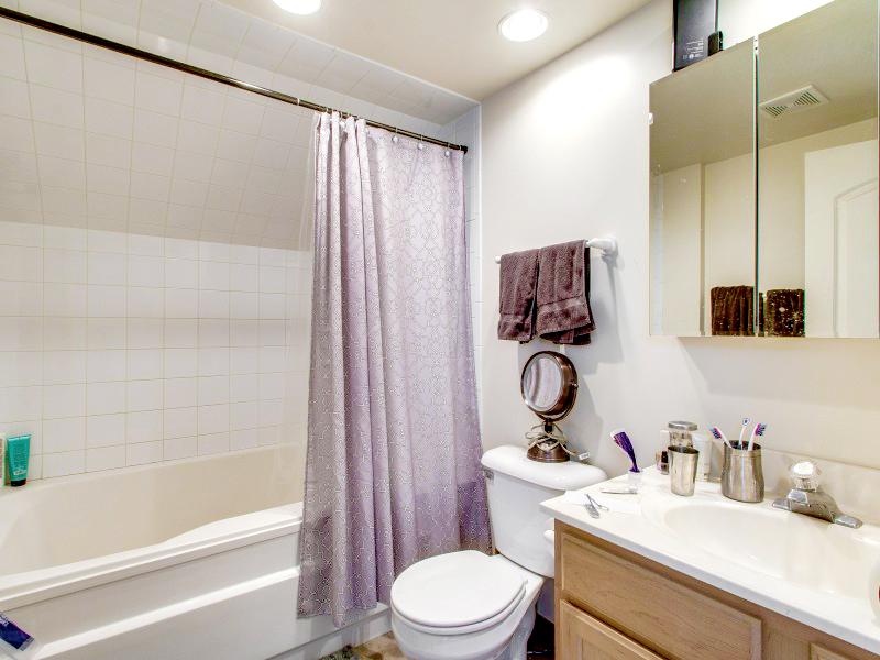 1938-1942 North Halsted Interior Bathroom Chicago TARIS Real Estate