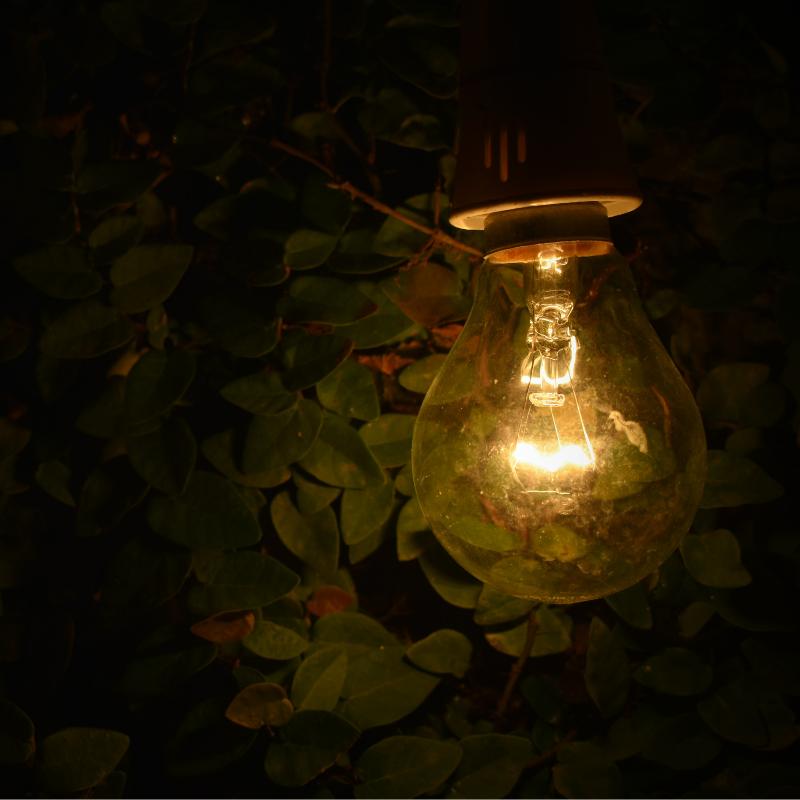 Lent light.png