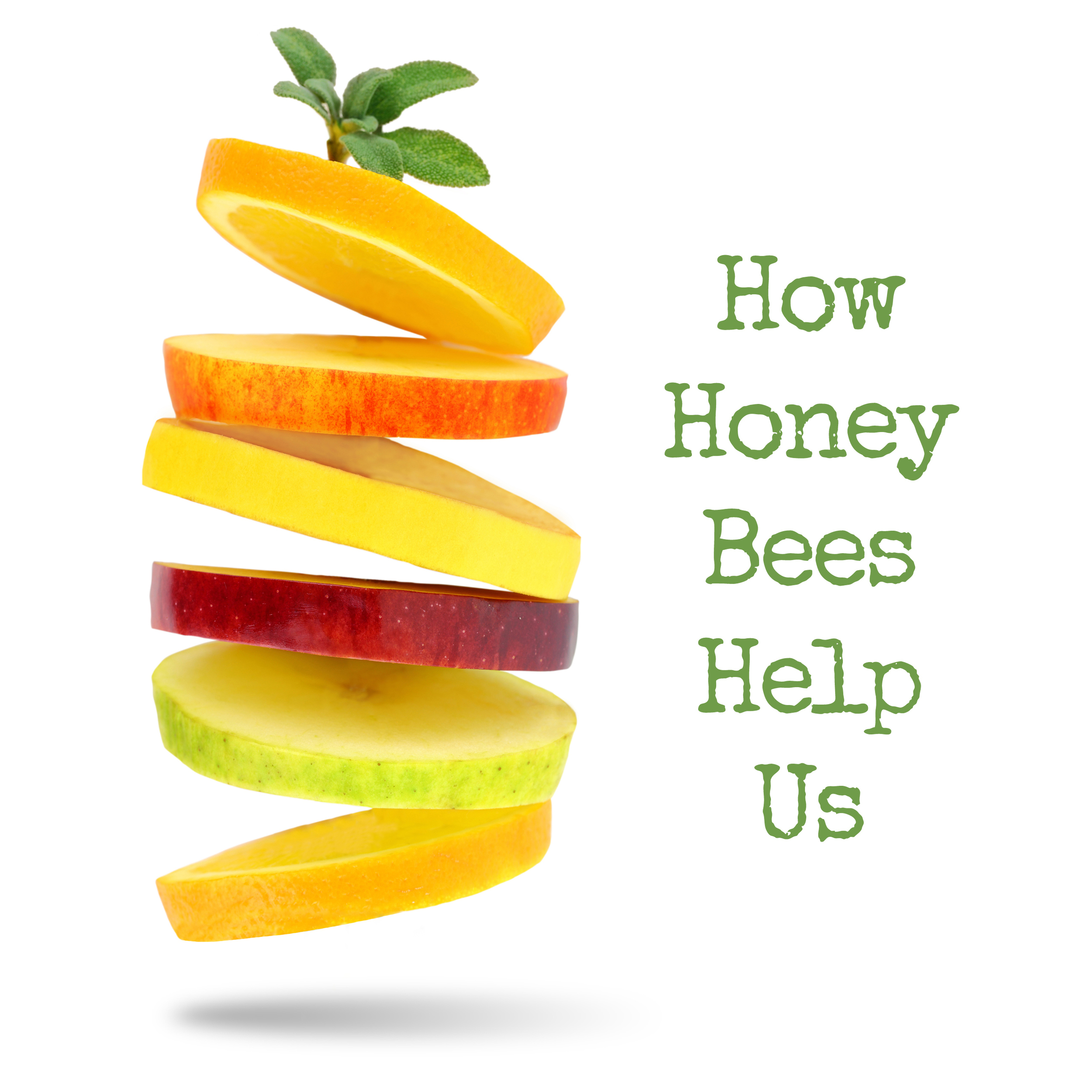 If you enjoy eating fresh fruits and vegetables, you likely have a bee to thank for that. Honey bees help pollinate about 80% of the produce we buy at the store and grow in our gardens. Billions of bees are needed around the world to make healthy food available for us to eat.